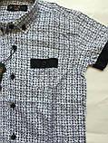 Рубашка с коротким рукавом,клетка для мальчиков 5-16 лет, фото 7
