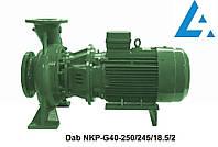 Dab NKP-G40-250/245/18.5/2 насос