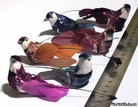Птички на магните 2