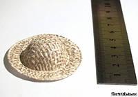 Соломенная шляпка светло-бежевая