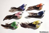 Птички на прищепке №21 с пятнами (6 цветов), 5 см.