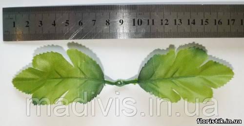 Листья дуба (5 шт.)