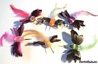 Колибри на прищепке №20 (6 цветов)