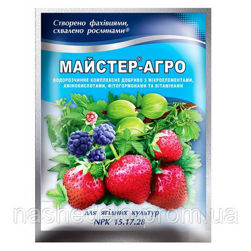 Мастер 100 гр 15-17-28 для ягод