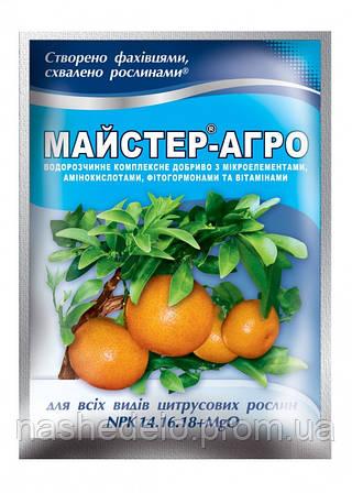 Мастер-Агро 25 гр. 14-16-18 (для цитрусовых)