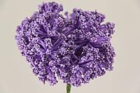 5633-1-8   фиолет