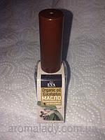 "Organic Oil ""EVCALYPTUS"" (EVA cosmetics)"