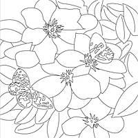 Холст с контуром 'Цветы' (30см*30см)