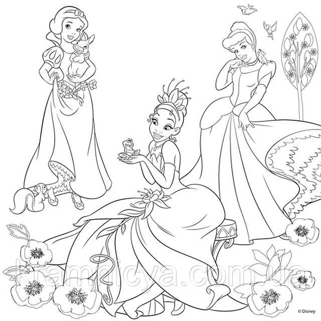 Холст с контуром 'Принцессы-3' (30см*30см) с красками