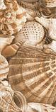 Плитка облицювальна для ванних кімнат Sea Breeze Shells бежевий, фото 6