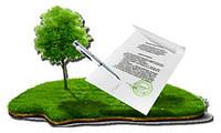 Получение разрешения на разработку документации