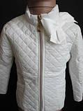 Красивые курточки для маленьких модниц., фото 2
