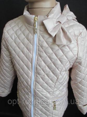 Модные куртки для девочек.