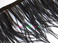 Перья страуса на ленте, черный