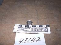 Заглушка головки блока Д-240-245 (диаметр 17 мм.) сталь; Д02-003-А1