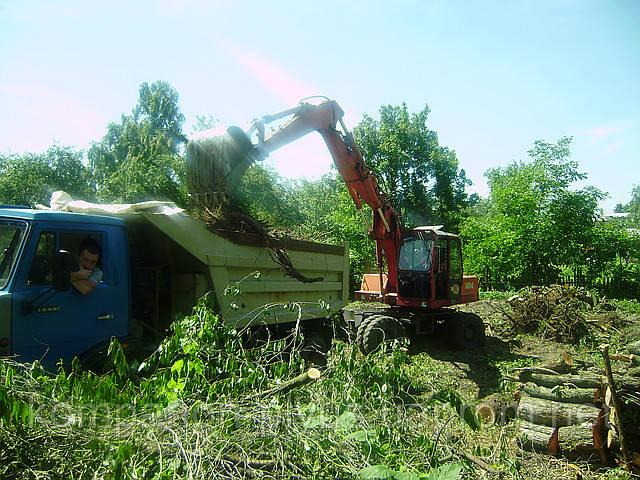 Удаление деревьев с участка.