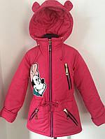 Куртка для девочек Микки  весна-осень,размеры 30-40(4-12 лет) ,S454