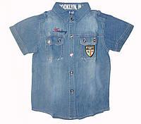 Джинсовая рубашка для мальчика F&D 935 (р.10/11, 12/13 лет)
