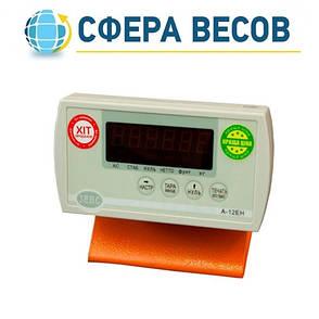 Весы платформенные ЗЕВС-ЭКОНОМ (500 кг - 1200х1200), фото 2