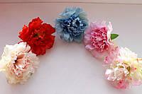 Головки цветов - гвоздики