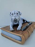 Собака на книзі (біла )