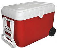 Изотермический контейнер 48 л красный, Mega