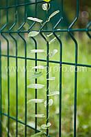 Заборы для огорода
