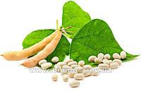 Фасоль белая крупная Natural Green 300 грамм