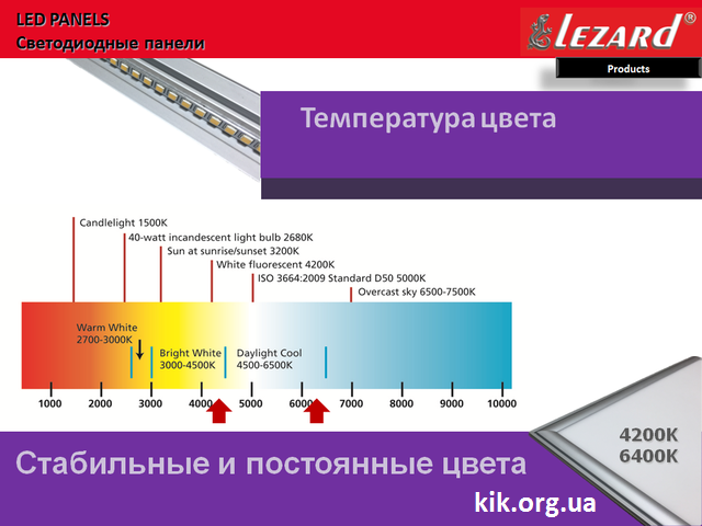 lezard kik.org.ua
