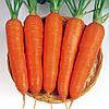 Семена моркови Виктория F1 200 000 сем. Seminis