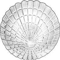 Тарелка Атлантис  D-240мм (10236-12)