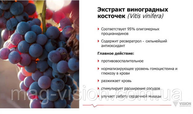Экстракт винограда захватывает свободные радикалы и жировые переоксиды, при этом понижая окисление липидов, что, в свою очередь, полностью подавляет выработку свободных радикалов ферментами ксантиноксидазы, уменьшает повреждаемость клеток и тканей
