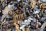 Лом металла вывезем Днепр, фото 6