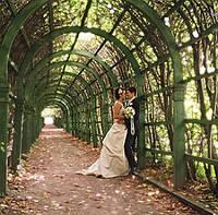 Церемония бракосочетания в Пражской ратуше