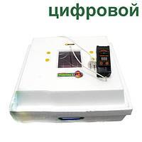 """Инкубатор бытовой """"Рябушка-2"""" с ручным переворотом и цифровым терморегулятором (на 70 яиц), фото 1"""