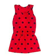 Трикотажное платье Красный горох, интерлок