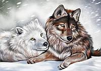 """Схема для вышивки бисером волки """"Вместе"""", фото 1"""