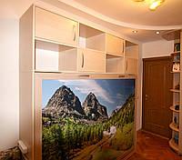 Горизонтальная шкаф-кровать с фотопечатью на аракале