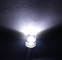 Светодиоды 5 мм 100 º белые , фото 1