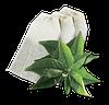 Чай зелёный GEMINI в пакетиках 25 пак по 2 г
