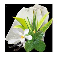 Чай Сенча м'ятна в пакетиках GEMINI 25 пак по 1,5 г