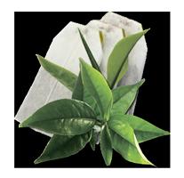 Чай чорний в пакетиках GEMINI 25 пак по 2 г