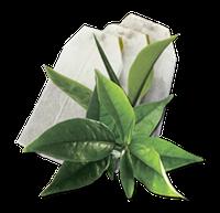 Чай чёрный в пакетиках GEMINI 25 пак по 2 г