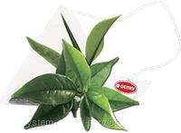 Чай чорний в шовковій пірамідці GEMINI 15 пир по 2,5 г