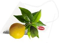 Чай Эрл Грей в пирамидках GEMINI 15 пак 2,5 г