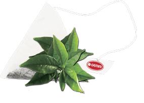 Чай зелений GEMINI в пірамідках 15 пир по 2 г