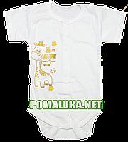 Детский боди-футболка р. 68 ткань КУЛИР 100% тонкий хлопок ТМ Авекс 3087 Бежевый