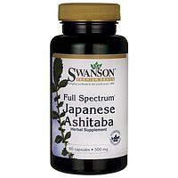 Ашитаба Японская, 500 мг 60 капсул