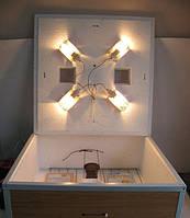 """Инкубатор бытовой """"Курочка Ряба"""" с автоматическим переворотом и цифровым терморегулятором (на 80 яиц), фото 1"""