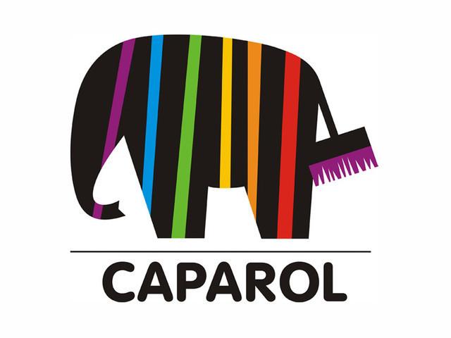 "Шпатлевки ""Caparol"""